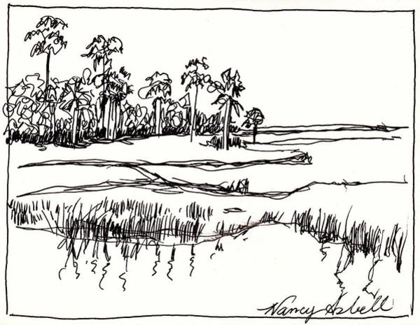 Beach Grass Drawing - Coastal Marsh by Michele Hollister - for Nancy Asbell
