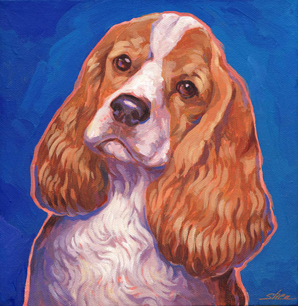 Cocker Spaniel Painting - Cocker Spaniel by Shawn Shea
