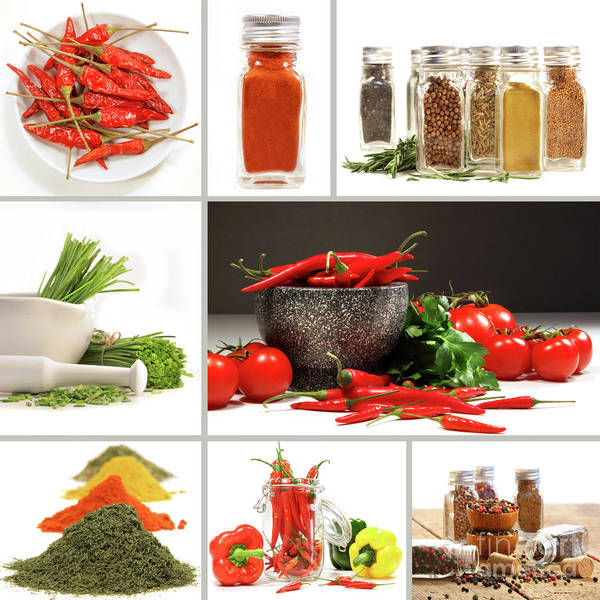 Parsley Photograph - Collage Of Different Colorful Spices For Seasoning by Sandra Cunningham