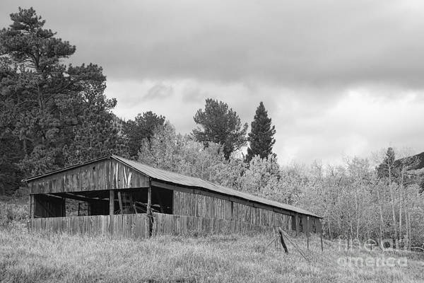 Photograph - Colorado Rustic Autumn High Country Barn Bw by James BO Insogna