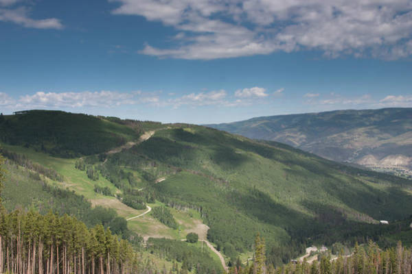Photograph - Colorado View From Trail To Beaver Lake by James Woody