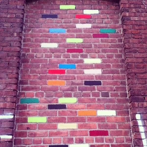 Wall Art - Photograph - Colored Blocks by Shane Roberts