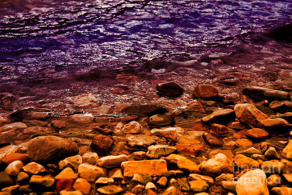 Photograph - Colorful Lakeshore by Rachel Duchesne