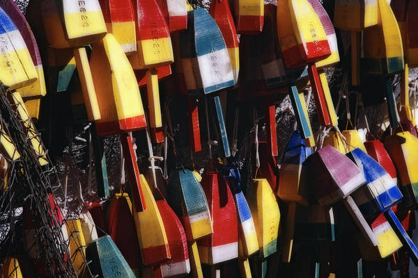 Lobstering Photograph - Colorful Lobster Buoys  by George Oze