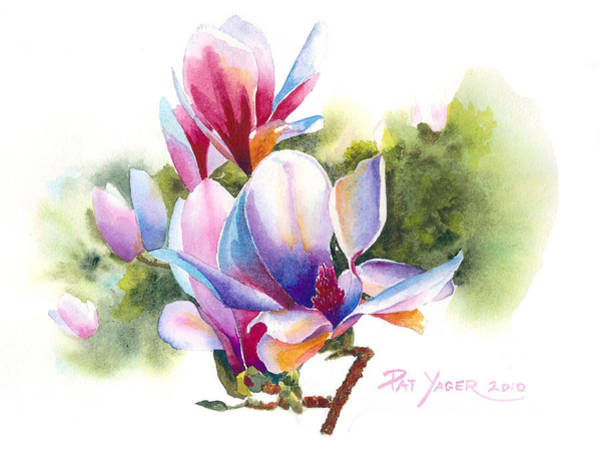 Wall Art - Painting - Colorful Magnolia by Pat Yager