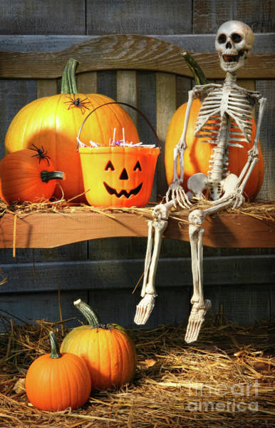 Wall Art - Photograph - Colorful Pumpkins And Skeleton On Bench by Sandra Cunningham