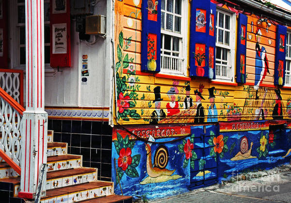 St. Maarten Photograph - Colorful Whimsy  by Thomas R Fletcher