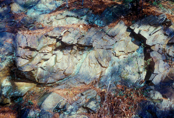 Photograph - Colorfull Rocks by Mark Dodd