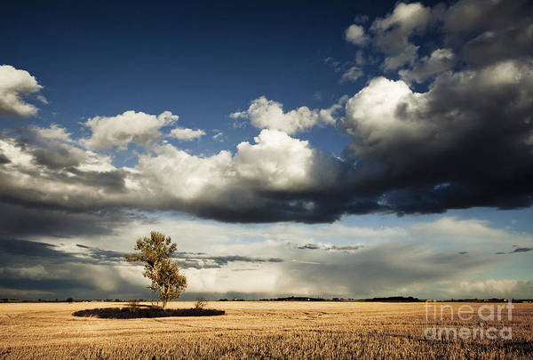 Photograph - Coming Storm by RicharD Murphy