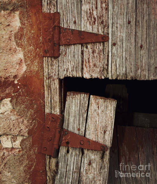 Photograph - Coming Unhinged by Pam  Holdsworth