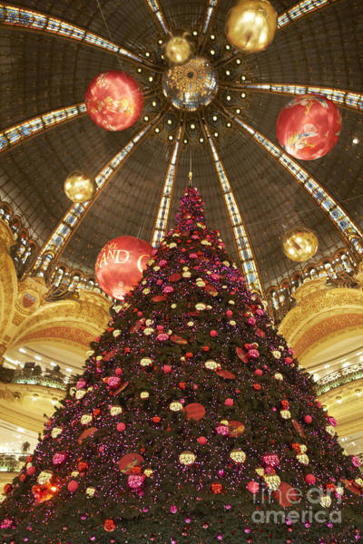 Photograph - Commercial Centers Christmas Tree by Agusti Pardo Rossello