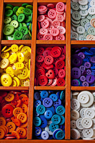 Compartments Photograph - Compartments Full Of Buttons by Garry Gay