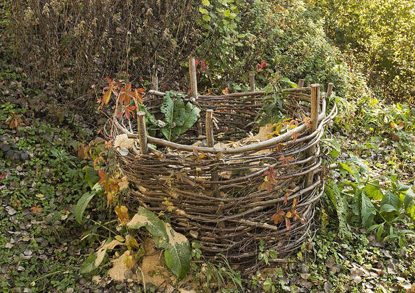 Coppice Photograph - Compost Container by Bob Gibbons