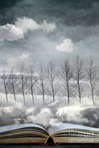 Photograph - Conceptual Image Of Open Book With Floating Clouds And Trees by Sandra Cunningham