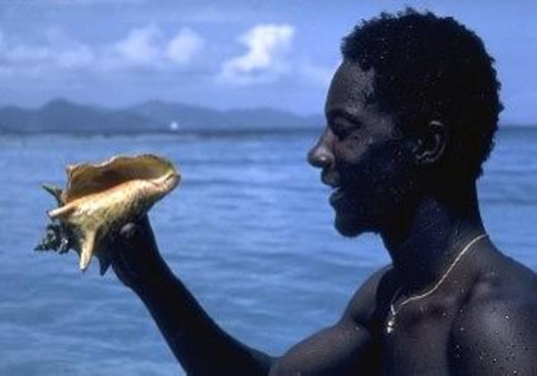 Photograph - Conch Diver by Don Kreuter