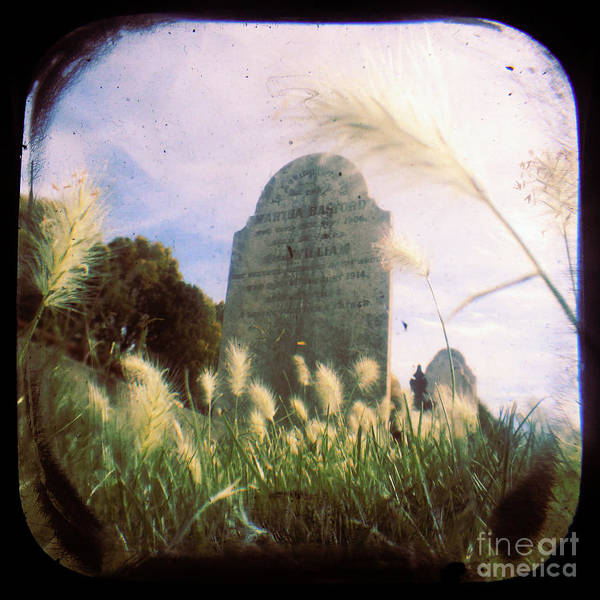 Grave Photograph - Concilation by Andrew Paranavitana
