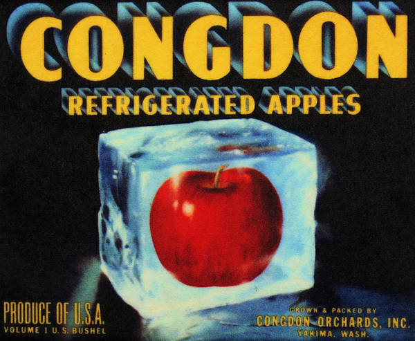 Photograph - Congdon Refrigerated Apples by Kristin Elmquist