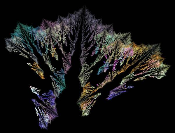 Reef Digital Art - Coral by Betsy Knapp