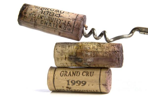 Outstanding Photograph - Cork Of French Wine by Bernard Jaubert