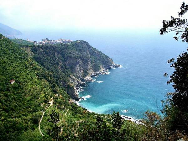 Marilyn Dunlap - Corniglia Cinque Terre and Vineyards