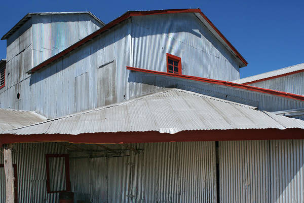 Photograph - Corrugations 2 by Brandy Beverly