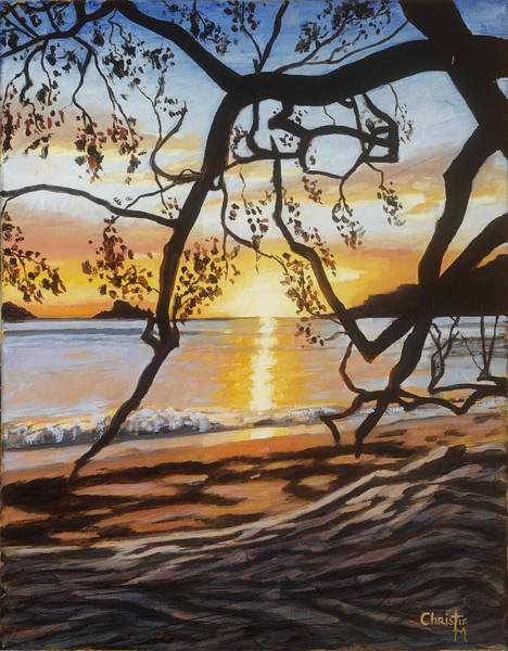 Wall Art - Painting - Costa Rican Sunset by Christie Michael
