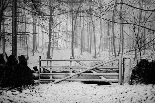 Gate Wall Art - Photograph - Cotswolds Winter by Andrew Lockie