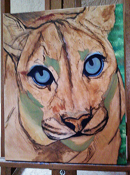 Painting - Cougar - Wip by Donna Proctor