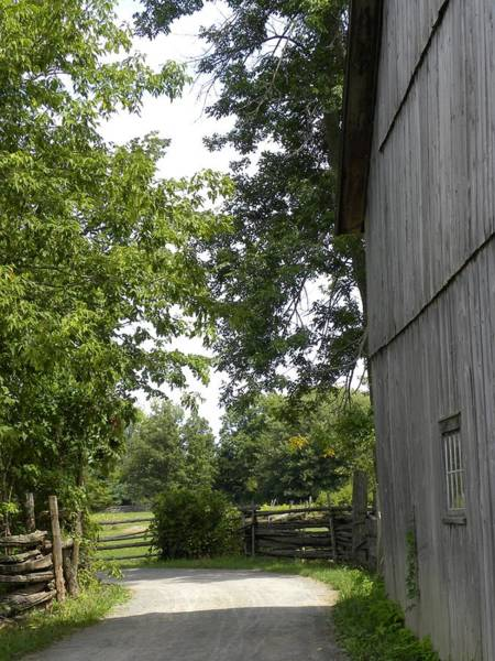 Photograph - Country Roads by Peggy  McDonald