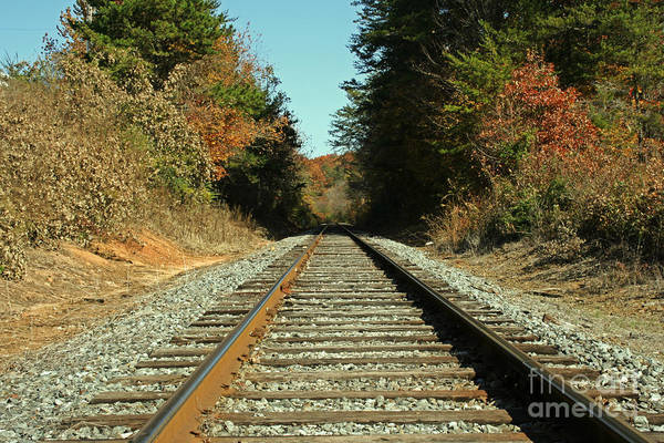 Photograph - Country Tracks 2 by Michael Waters