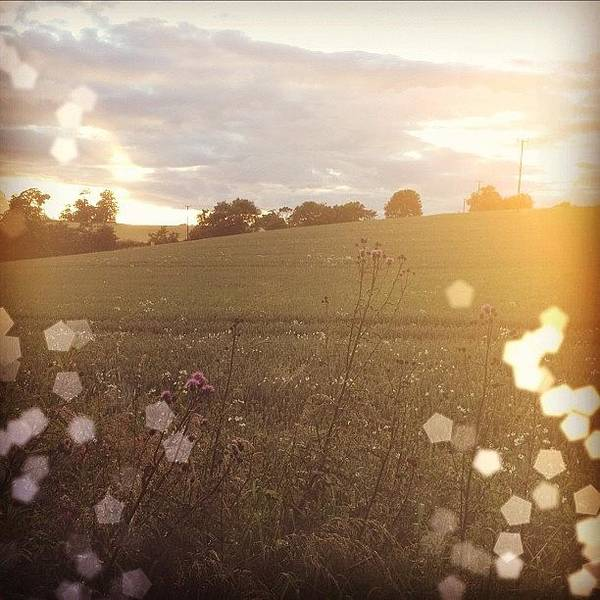 Grace Wall Art - Photograph - #countryside #country #scotland by Grace Shine