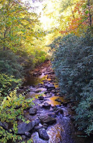 Photograph - Courthouse River In The Fall 3 by Duane McCullough