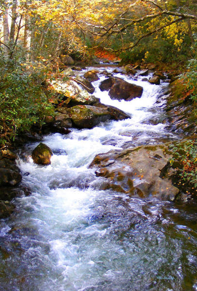 Photograph - Courthouse River In The Fall Filtered by Duane McCullough