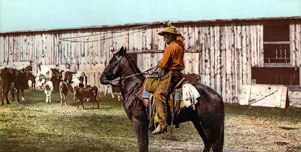 Photograph - Cowboy, C1900 by Granger