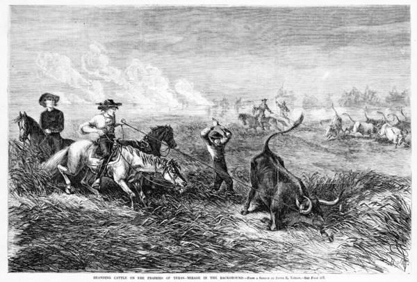 Branding Iron Photograph - Cowboys Branding Cattle On The Prairies by Everett