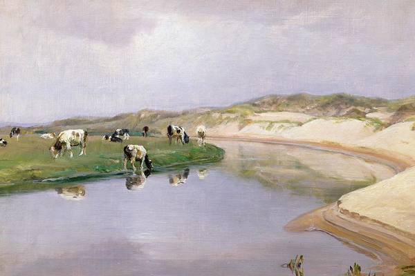Liver Painting - Cows Grazing At Liver As North Jutland by Niels Pedersen Mols