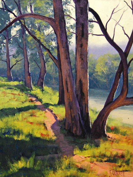Mountain Lake Painting - Coxs River Sheoaks  by Graham Gercken