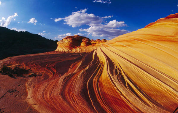 Photograph - Coyote Buttes by Craig Ratcliffe