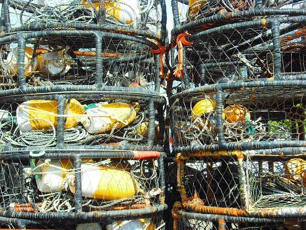 Photograph - Crab Traps  by Kelly Manning