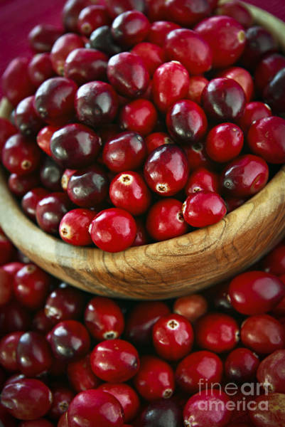 Wall Art - Photograph - Cranberries In A Bowl by Elena Elisseeva