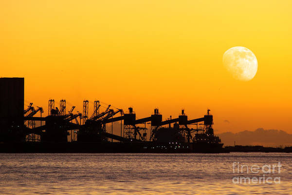 Cargo Containers Wall Art - Photograph - Cranes At Sunset by Carlos Caetano