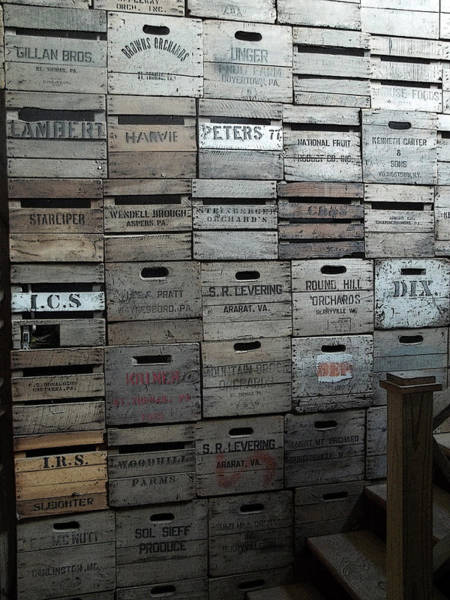 Photograph - Crate Wall by Anne Cameron Cutri