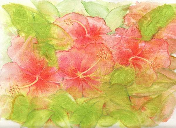 Persimmon Painting - Creamsicle Hibiscus by Carla Parris