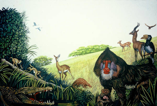 Painting - Creatures Large And Small by Mel Greifinger