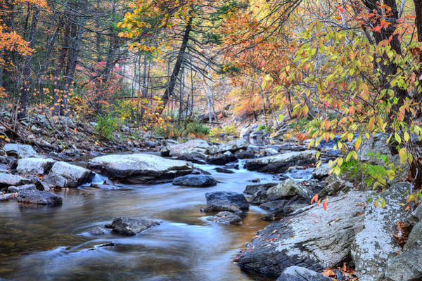 Photograph - Crisp Autumn Air by JC Findley