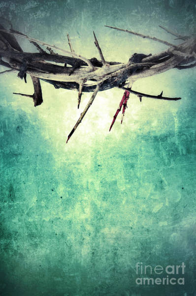 Crucifixion Of Jesus Photograph - Crown Of Thorns With Blood by Jill Battaglia