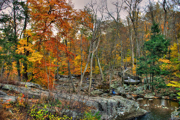 Photograph - Cunningham Falls Viewing Platforms by Mark Dodd