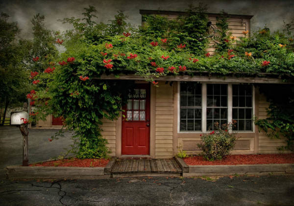 Red Robin Photograph - Curb Appeal by Robin-Lee Vieira