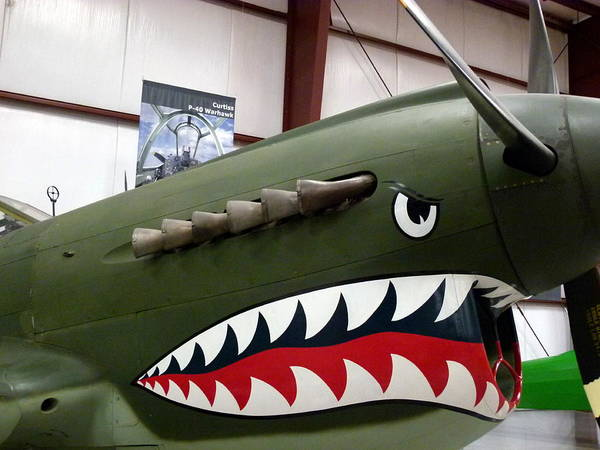Photograph - Curtiss P-40 Warhawk by Jeff Lowe