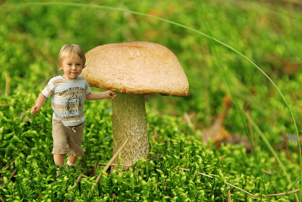 Young Boy Photograph - Cute Tiny Boy Playing In The Forest by Jaroslaw Grudzinski